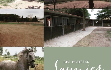 The Saunier stables €16