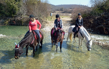 The relay of Vazeille horse farm €11