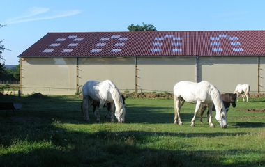 The stables of Brotonne €12