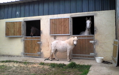 The stables of the Port of Avoise €11