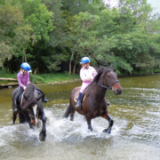 Ross House Equestrian Holidays €20