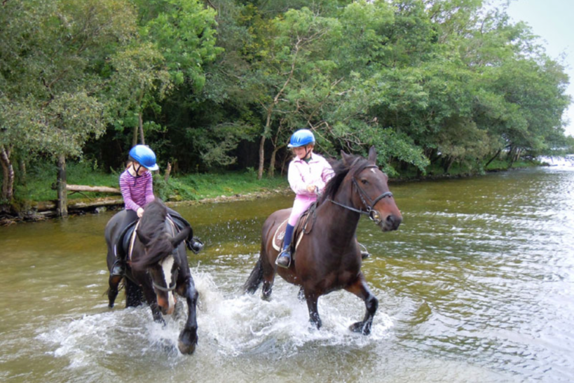 Ross House Equestrian Holidays 20 €